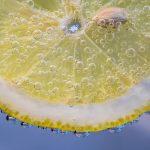 slice-of-lemon-2135548_640