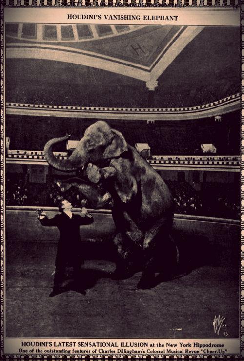 Disappearing Elephant - Harry_Houdini