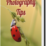 Ebookcover_Natural_Photography_Tips-MyriamMoments-Hard_Cover_Open
