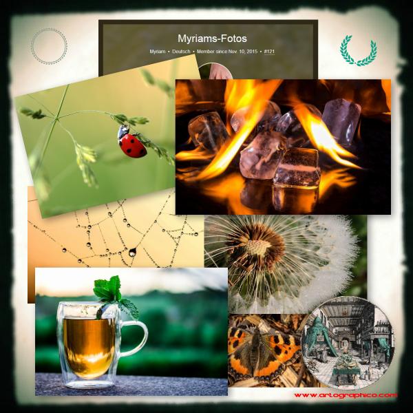 Myriams Fotos - Collage