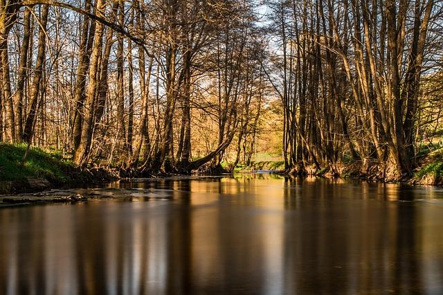 Sunbeam River